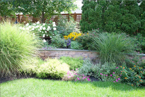 Our Grapevine Irrigation Repair team sees the potential in your landscape